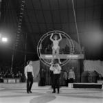 Klucky Circus
