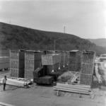 Poieni, lumber factory