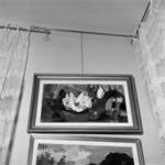 Reprodukciók festészet, szobrászat Ilie