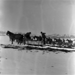 manure transporting with slide