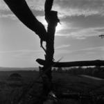 kerítés a Bükkben