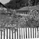 Reketó, iskola, kertészet