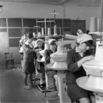 M.I.U. iskolai műhely - sóbánya, Désakna