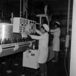 palackozó gép