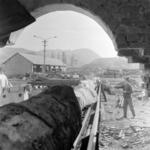 Fűrészárú gyár, Kissebes