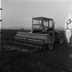 mezőgazdaság, búza vetés