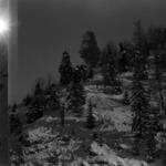 landscape winter