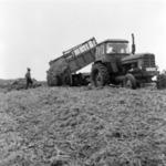 mezőgazdaság, silózás