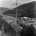 Tarnica, favágók