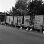 Kiállítás Szamosfalva