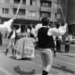 néptánc ( magyar tánccsoport )