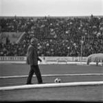 """U""-Steaua, közönség"
