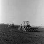 corn sowing in spring