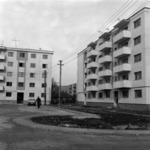 Szőnyeg és fonottkosár manufaktúra, Szamosújvár