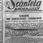 old newspapers, reproduction, with Trifu, library