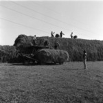 straw transportation