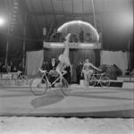 Klucky cirkusz
