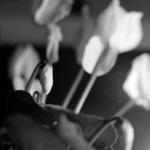 Virágok, szimbólum