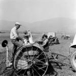 preparing the soil, sowing