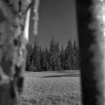 tájkép tél