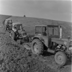 Torda, mezőgazdaság