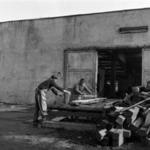 Fakitermelés
