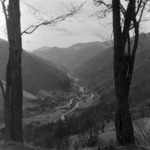 Jára-völgye