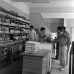 Zorilor [state farming shop]