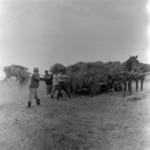 Transporting straw bale
