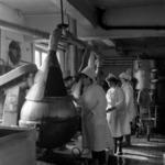 Feleacu factory