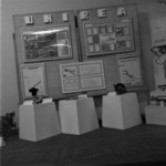 Exhibition, innovations for the county