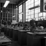 Glass industry Turda