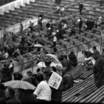 at the stadium