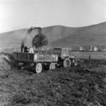agriculture, garbage transportation