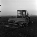 agriculture, wheat sowing