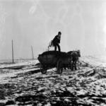 manure transporing in winter