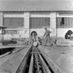 Lumber factory, Poieni