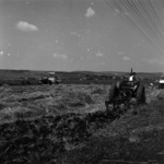 agriculture, harvest, plowing