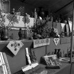 Exhibition Someşeni