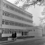 Vasilescu, Pharmaceutical Faculty