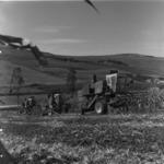 mechanized corn harvest