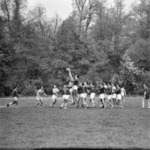 rugby Agronomia